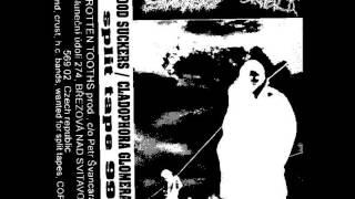 Cladophora Glomerata - Moral Insanity