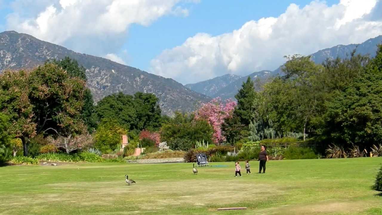 Los Angeles County Arboretum Botanic Garden Youtube