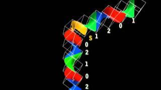 DNA  FRACTAL GEOMETRY FUNDAMENTALS
