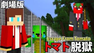 映画「トマト脱獄」- Escape From Tomato Prison
