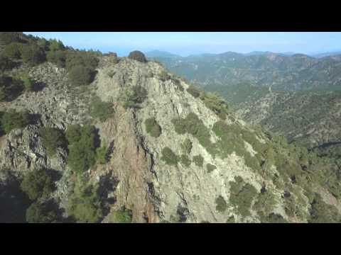 Γκρεμμός στο Δάσος Πάφου - Paphos Forest cliff
