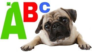 Abecedario para niños y los animales y sonidos 🐎 animales para niños en español🐎 letras y numeros