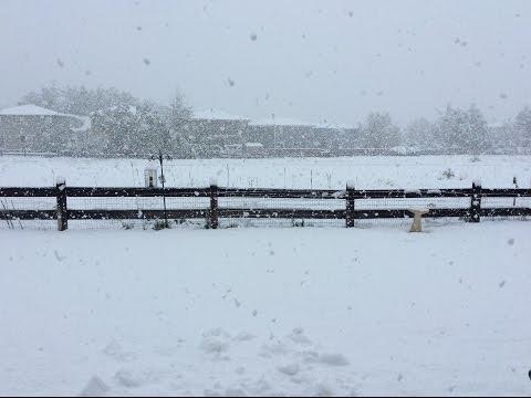 May 18 Snow Denver Colorado