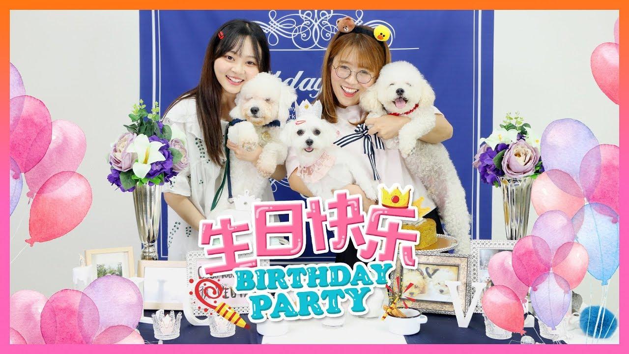 三隻狗狗的一歲生日派對!一起來和汪星人吃生日蛋糕吧!小伶玩具 | Xiaoling toys - YouTube