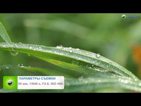 Обзор фотоаппарата Samsung Galaxy NX на ОС Android