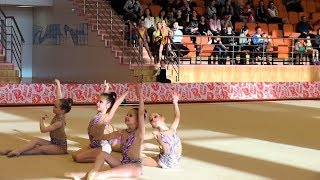 Открытый областной турнир по художественной гимнастике «Сибирские ласточки»