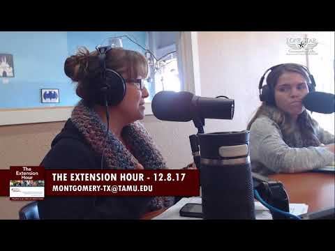 12.8.17 - The Extension Hour