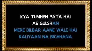 Kya Tumhe Pata Hai Aye Gulshan Karaoke - Dil Hai Betaab - Udit Narayan