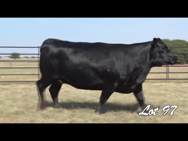 Pollard Farms Lot 97