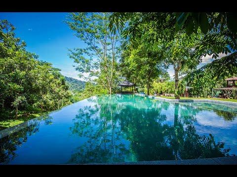 Templer Park Rainforest