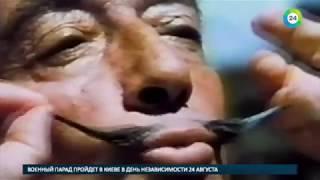Тело Дали эксгумируют ради теста ДНК на отцовство   МИР24