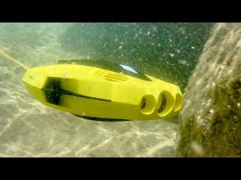 Chasing Dory: An affordable underwater drone