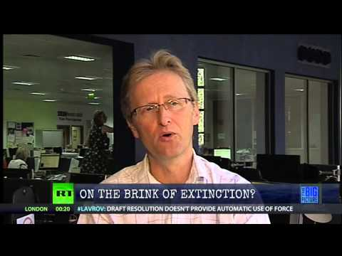 Dr. Paul Wignall on The Permian Extinction