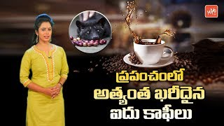 Top 5 Most Expensive Coffees In World | Worlds Expensive Coffee | Telugu Interesting Facts
