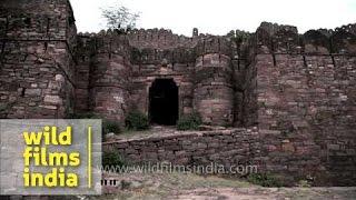 Khandar Fort - an ancient fort at Sawai Madhopur, Rajasthan