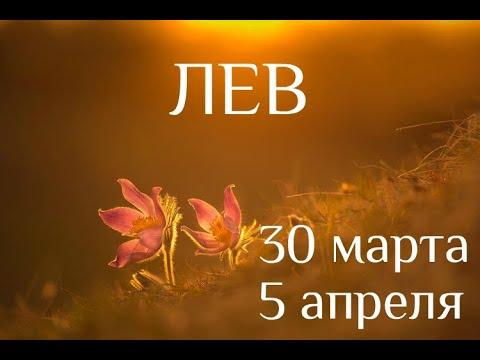 ЛЕВ. Таро-прогноз на 30 марта-5 апреля 2020. Таро-гороскоп для Львов от Ирины Захарченко.