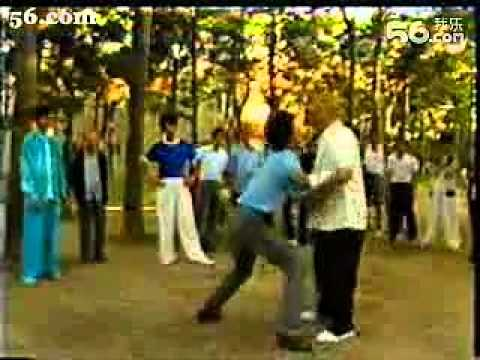 master Li Jing Wu - Tai Ji Quan and Push Hands