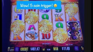 5 coin trigger on Buffalo Gold Slot! I've never gotten this before!