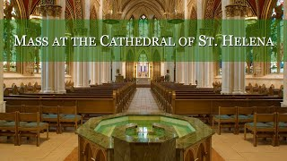 Daily Mass at the Cathedral of St. Helena