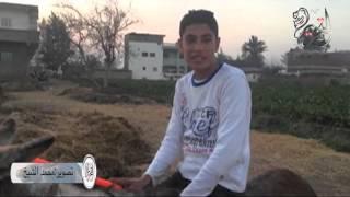 بالفيديو | فلاح يطالب المسؤولين بتنظيم مسابقة قفز حواجز عالمية لـ«الحمير»