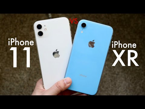 IPhone 11 Vs IPhone XR In 2020! (Comparison) (Review)