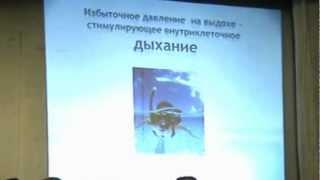 Иваненко И.Н. Исцеляющий импульс Голтиса