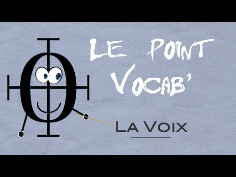 Le Point Vocab' 5 : LA VOIX
