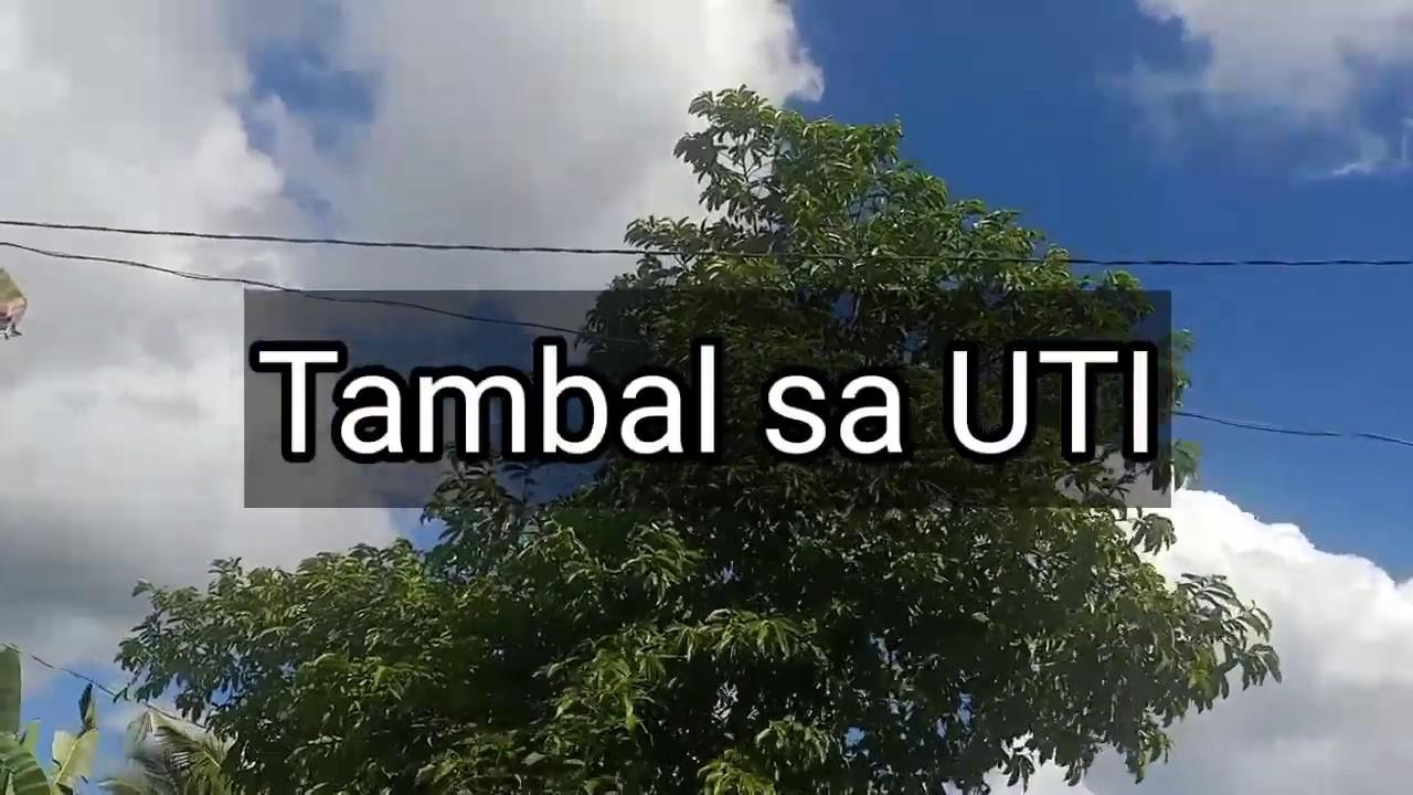 Mabisang gamot sa UTI – Tambal sa UTI | Herbal na Gamot #Herbalmedicine