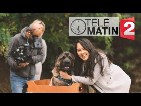 Notre Passage TV Sur Télématin / Vie Quotidienne, Akita Home ...
