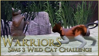 Envy Under the Moon • Warrior Cats Sims 3 Legacy - Episode #90(, 2016-09-09T19:00:06.000Z)