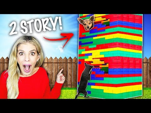 We Built our Dogs a Giant Lego Mansion out of Legos in our House! (Huge Battle in to win)