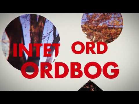 Niklas - Bedøver (Official Lyric Video)
