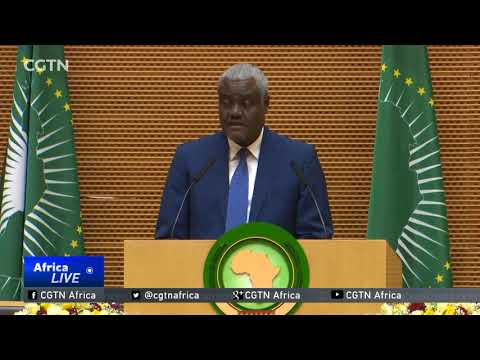 AU Commission Chair: Trump's comments marginalise Africa