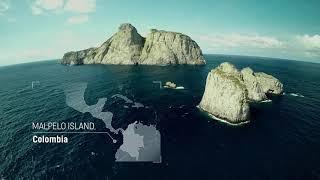 Великий Тихий океан. 1 и 2 серии (Таинственный / Жестокий)
