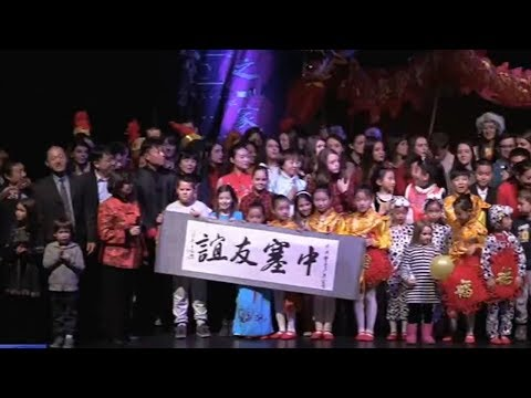 Chinese nationals in Serbia celebrate Chinese New Year together