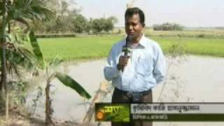 FoSHoL Integrated Farming in Bangladesh
