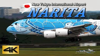 【4K 60P】Special Spotting in NARITA AIRPORT 2019 the Amazing Airport Spotting