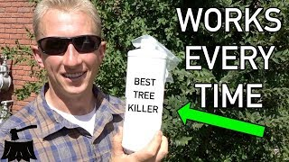 How To Kill An Elm Tree [For Good]