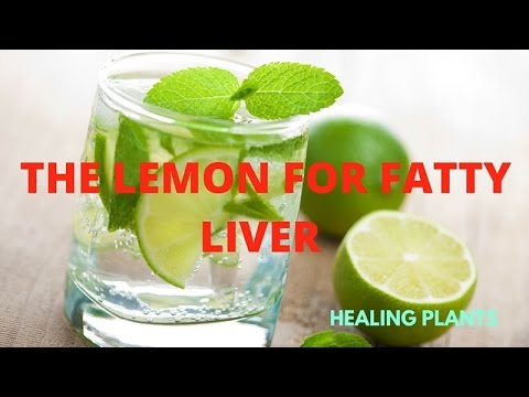 THE LEMON FOR FATTY LIVER - STRENGTHENS, REGENERATES, DETOXIFIES