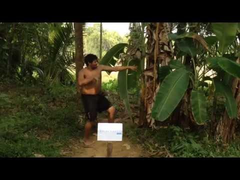 Friends of Contactlenses.co.uk.... Jungle Dance Man