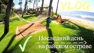 Мауи, Гавайи. VLOG Америка :) Вегетарианские суши, Пляж, Аэропорт, Магазинчики(Всем привет! В этом видео мы находимся на Мауи, острове посреди океана на Американской территории, штат..., 2015-11-21T21:38:12.000Z)