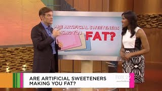 Dr. Jen Discusses Whether Artificial Sweeteners Make You Fat on The Doctor Oz Show