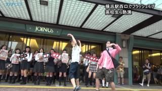 女子高生ら熱演、横浜駅西口でフラッシュモブ/神奈川新聞(カナロコ) thumbnail