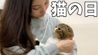 猫の日なので甘えん坊な親子猫をたっぷり甘やかしてみたらこうなったw