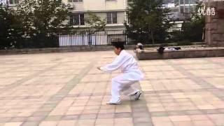 Tanglang Quan  Mei Hua Lu - 螳螂拳 梅花路