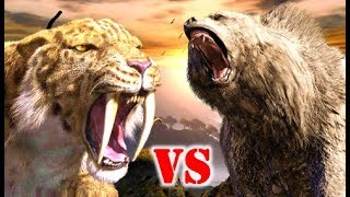 Sabre tooth Tiger Vs Cave Bear who would win? We take a look at the...