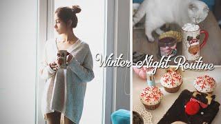 Мой зимний вечер /Winter Night Routine