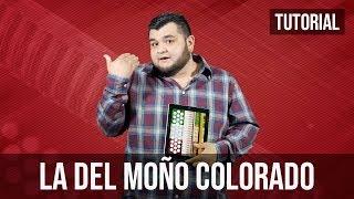 La del Moño Colorado - Tutorial iPad Acordeón