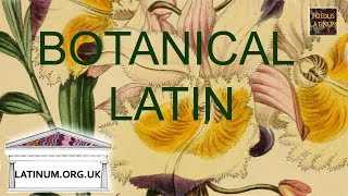 An Introduction to Botanical Latin