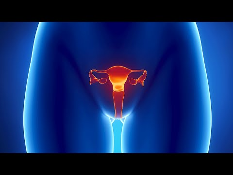 Human Physiology - Reproduction: Female Sexual Response